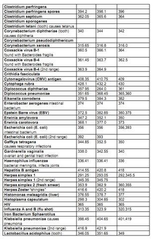 File:CFAD p564 bacteria and viruses 2.jpg