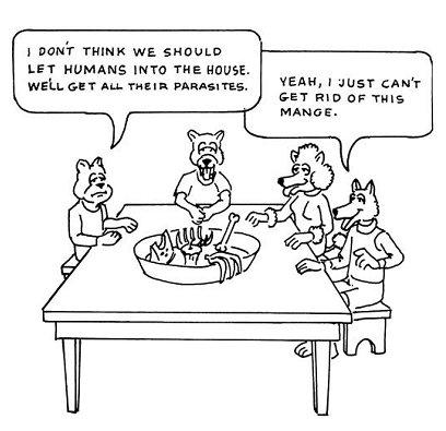 File:CFAD p42 pet joke.jpg