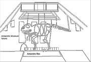 AntMsm orginal sketch