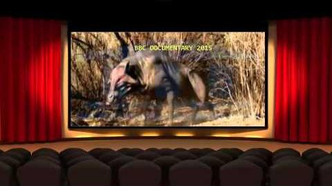 BBC Documentary BBC Documentary 2015 Walking with Beasts Part 1 BBC Documentary