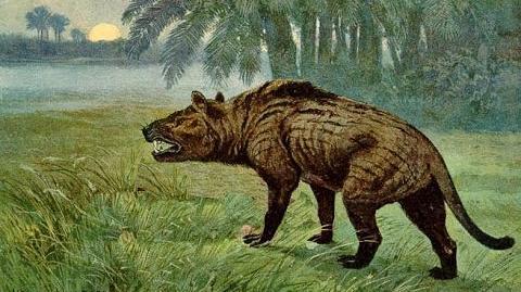 Hyenadon Versus Smilodon Documentary on the Prehistoric Battle of Predators (Full Documentary)