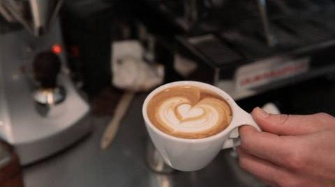 How to Make a Cappuccino Perfect Coffee