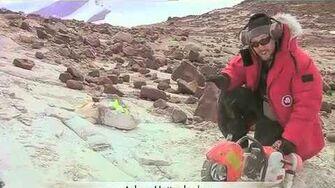 Excavating Triassic Fossils in Antarctica -- Antarctica Video Report 7