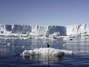 Antarticav2