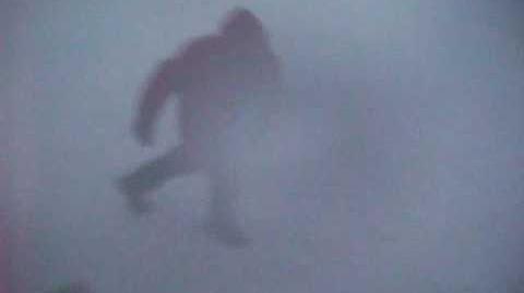 107 knot blizzard in Antarctica