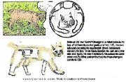 KusoCartoon 13804949810411