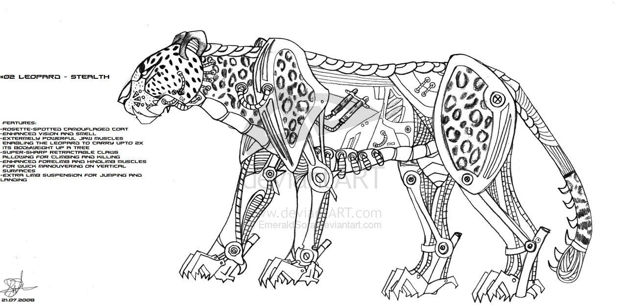 Snow Leopard Skeleton Structure - Best Image of Leopard 2018