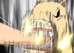 Ponygon muerde la mano de Kiyomaro