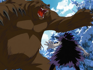 Brago and Bear stand off