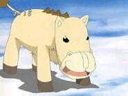 ZB-ponygonschneider