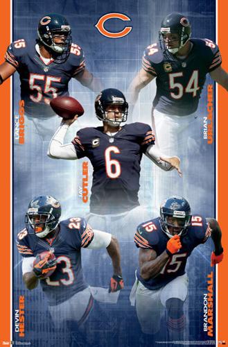 Bearsprofile9