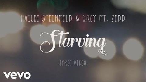 Hailee Steinfeld, Grey - Starving (Lyric Video) ft
