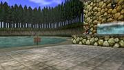 Estanque de Pesca (Ocarina of Time)