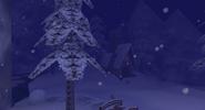 Village dans la Montagne nuit
