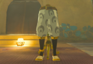 Breath of the Wild Gerudo Vai (Leg Armor) Gerudo Sirwal (Inventory)