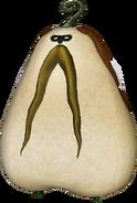 Bucha