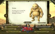 Goron Site Officiel TP