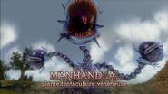 Manhandla HW