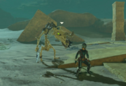 Breath of the Wild Lizalfos Stalizalfos & Stalink (Radiant Armor Set)