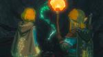 BOTW Suite Link Zelda