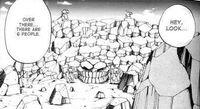 Roca de la Tortuga Manga LA