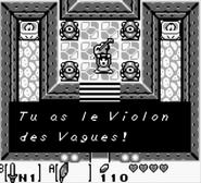 Cave Flagello Violon des Vagues LA