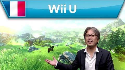 Interview de Développeur - The Legend of Zelda (Wii U)