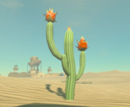 Breath of the Wild Gerudo Desert Voltfruit Cactus (Gerudo Province)