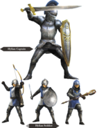 Hyrule Warriors Allied Units Hyrulean Soldiers (Render)