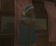 Breath of the Wild Enchanted Hylian Hood (Kakariko Village)