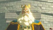 Rey Rhoam recuerdo BotW