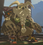 Breath of the Wild Rito Chieftain Elder Kaneli (Rito Village)