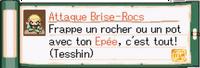 Brise Rocs TMC