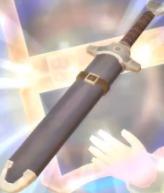 Épée d'entrainement SS