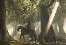 Bosque Farone Beta TP