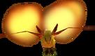 Keese de Fuego