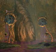 Dionéa, Mauvaise herbe du Crépuscule (1)