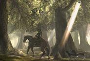Forêt Firone béta TP