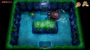 TLOZ Link's Awakening screen 18