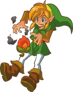 Link Graine Braise