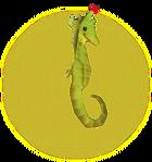 Hippocampe MM