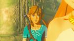 Link Zelda BOTW