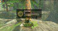 Link obteniendo la Hoja Kolog BotW