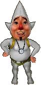 Tingle costume cocolint HWL