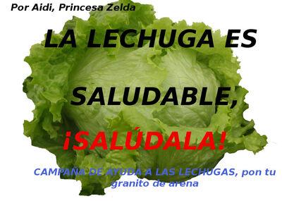 Campañadeayudalechuga