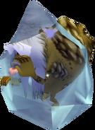 Ancêtre Goron gelé
