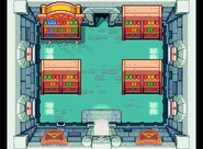 Bibliothèque Royale d'Hyrule TMC (2)