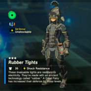 Breath of the Wild Rubber Armor (Leg Armor) Rubber Tights (Inventory)