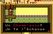 Champignon OOS