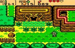 Entrée Niveau2 Ruine Serpent